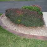 Matching Existing Landscaping